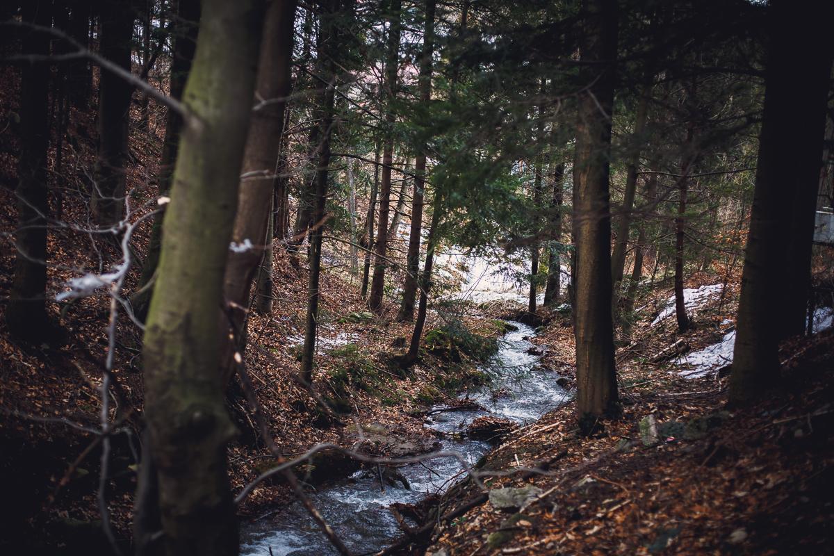 Szczyrk Skrzyczne spacer zielonym szlakiem fotografie-3