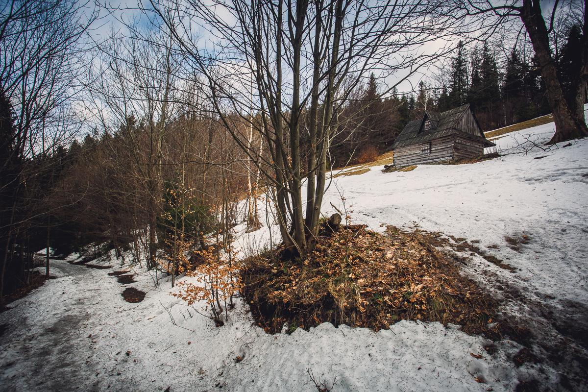 Szczyrk Skrzyczne spacer zielonym szlakiem fotografie-11