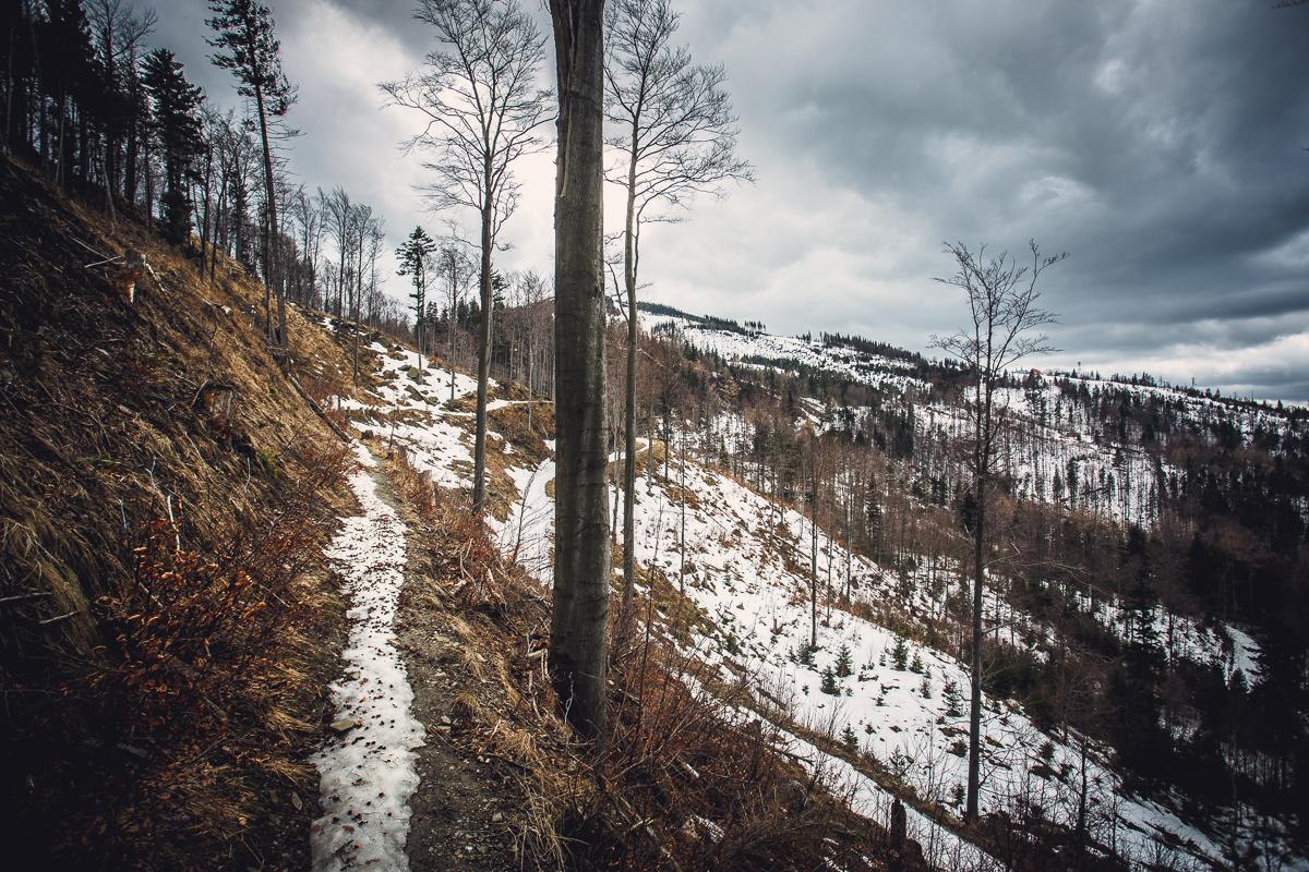 Szczyrk Skrzyczne spacer zielonym szlakiem fotografie-17