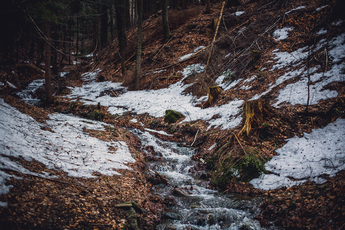 Szczyrk Skrzyczne spacer zielonym szlakiem fotografie-2