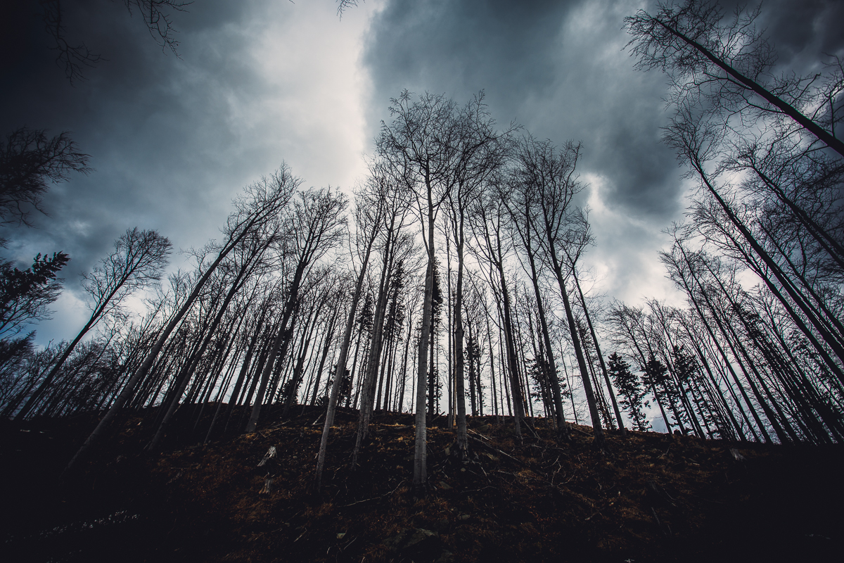 Szczyrk Skrzyczne spacer zielonym szlakiem fotografie-21